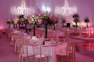 Linen rentals los angeles ca table drape rentals junglespirit Images